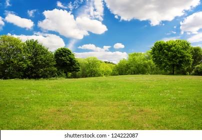Spring nature landscape