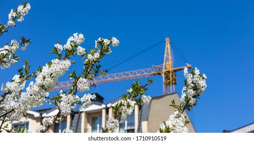 Spring and new house construction concept. Construction crane with a spring flowering trees and blue sky on a sunny day