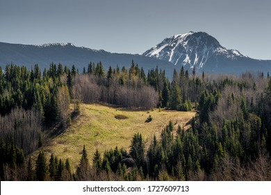 Spring in the northern mountains and boreal forest of BC Canada.