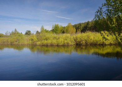 Spring on the forest river. Water landscape in may, national Park in Central Russia.