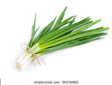 Spring onion isolated closeup