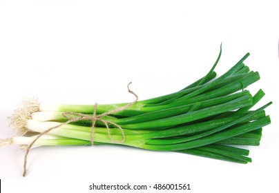 Spring onions are rich in vitamins,minerals and natural compound. Green onions or Spring onions with rope on white background.