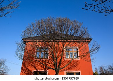 Spring in our street, city Kolín, Czech republic,