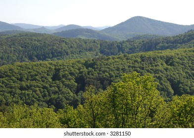 Spring in the Palatinate Forest, Germany