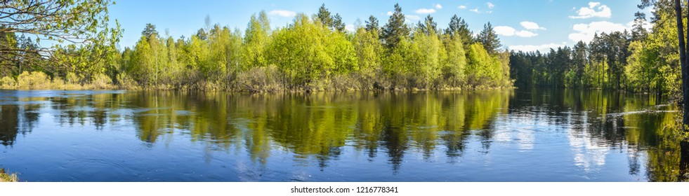 """Spring panoramic water landscape of Central Russia. Panorama of the river in may in the national Park """"Meshchersky""""."""