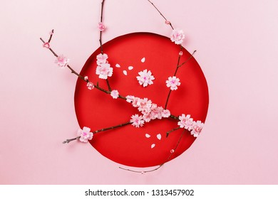 Spring papercraft composition with sakura branch on pink and red background
