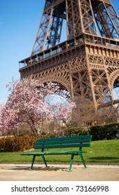 Spring in Paris. Bench near the Eiffel tower with blossoming cherry tree