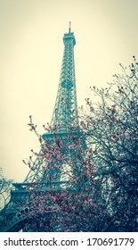 Spring in Paris. Blossoming fruit trees and Eiffel tower at backgrounds. Toned image. Retro style postcard.