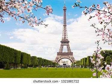 Spring in Paris. Eiffel tower, France