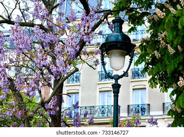 Spring in Parisian park - old lamppost between two trees covered with blossom.