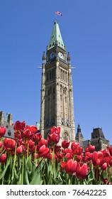 Spring Parliament