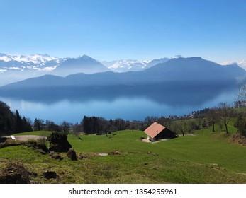 Spring pastures and meadows on the slopes of Mount Rigi - Canton of Lucerne, Switzerland (Kanton Luzern, Schweiz)