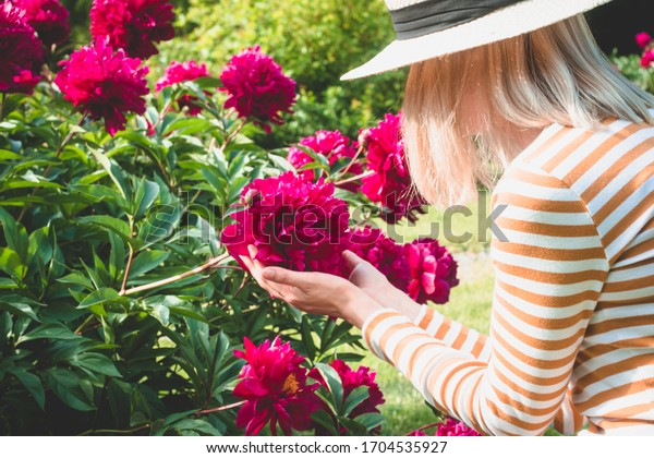 Spring, pions, garden, woman. Woman into a beige hat hold pink peony. Spring`s background.