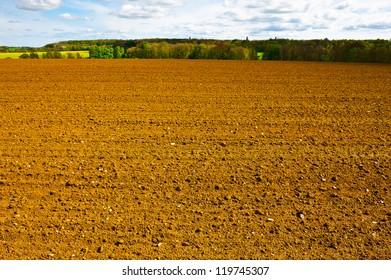 Spring Plowed Field- Belgian Landscape