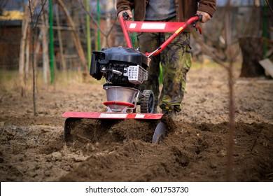 Spring preparation soil for seeding with tiller