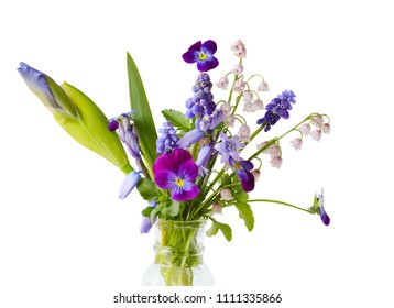 Spring purple flowers isolated on white background :  Iris, Bluebell, Maylily, Pansy, Grape Hyacinth Muscari