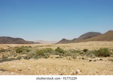 Spring in Ramon crater, Negev desert in Israel.