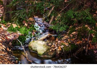 Spring River Running