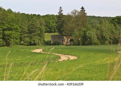Spring rural landscape