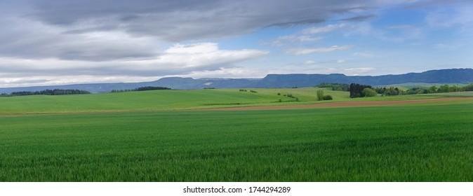 Spring rural landscape, Fields ran along the road near Broumov, Czech Republic