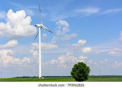 Spring rural landscape with single wind turbine