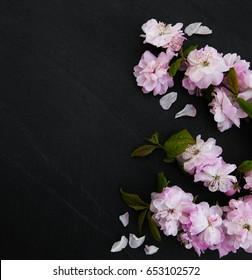 Flores Fondo Negro Images Stock Photos Vectors Shutterstock