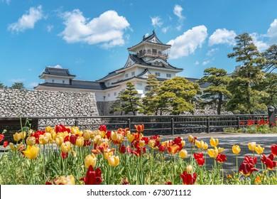 Spring scenery of the Toyama castle in Toyama, Japan