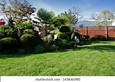 Spring season backyard vibrant growth green lawn area planted area topiary garden landscape color background