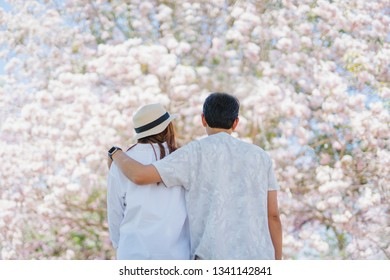 spring season with full bloom pink flower travel concept from asian couple enjoy with sight seeing sakura or cherry blossom with soft focus flower background