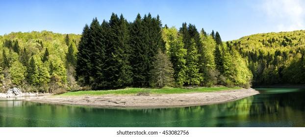 Spring Selva de Irati  jungle in Navarra Pyrenees of Spain