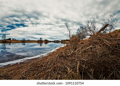 The spring sky reflects of the water of the river in the Northern Finland. The flooding river has brought dead branches on the shore.