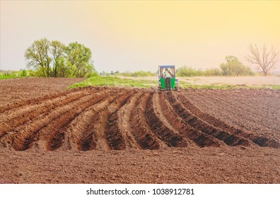 Spring sowing. Tractor in the field. Planting potatoes with a tractor.
