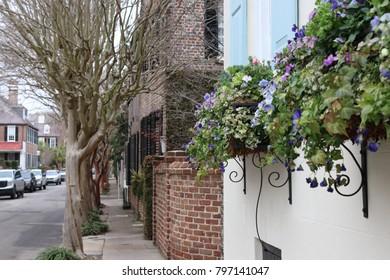 Spring Street Scene