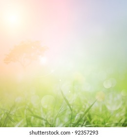 Spring or summer abstract nature background with grass in the meadow and sunset sky in the back