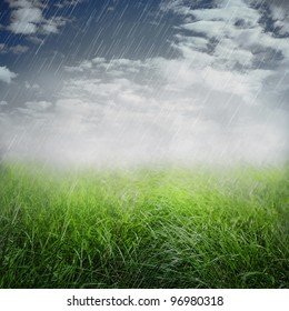 Spring or summer abstract nature background with grass in the meadow and rain in the back