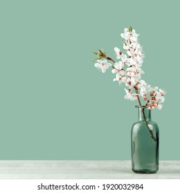 Spring or summer festive blooming with white flowers fruit tree branches in a small glass vase against tender pastel green background. Fresh floral wide background banner with copy space
