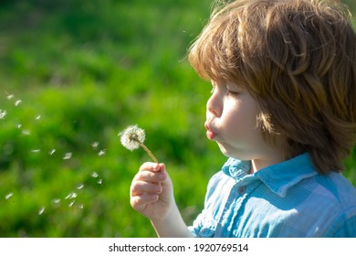 Spring or summer kid blow dandelions flower on walk and grass background. Soul harmony concept