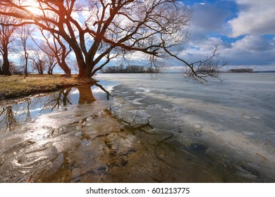 Spring Sunny Landscape With Blue Sky With Clouds And Frozen Lake.Spring Is Coming. Sunny Day In Early Spring On The Lake. Melting Ice On The Lake Surface. The Tree Bent Over The Water And Reflected.