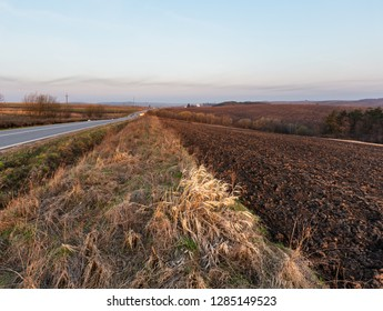 Spring sunrise rural country landscape with plowed agricultural fields, groves, road and village outskirts in far. Arable and growth farmlands in tender delicate morning daybreak sunlight.