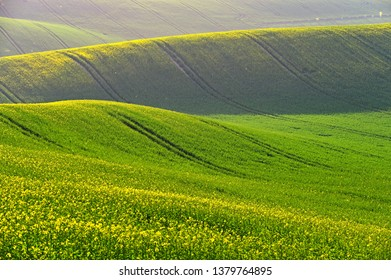 Spring sunset landscape photo of Moravian Tuscany in Czech Republic