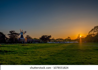 A spring sunset over the windmill on Wimbledon Common