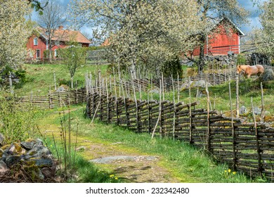 Spring in Sweden - rural image from the countryside of Smaland