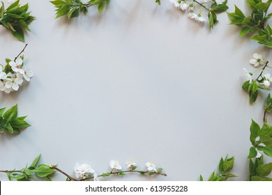 Spring tender background. Beautiful fresh flowers and leaves on gray background.