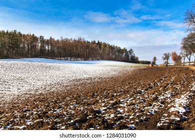 Spring thaw in the forest. Winter snow melts in Czech Republic. Sunny weather at the end of winter. The thaw in the winter.