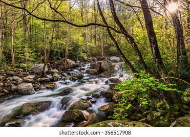 Spring time along the Little Pigeon River in the Great Smoky Mountains National Park.