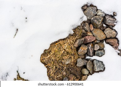 Spring time, a large layer of snow melts on the ground where the stones lie and the grass rises. Close up view from above
