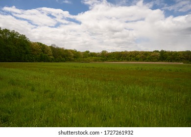 A spring time view of a meadow in South Brunswick, New Jersey.