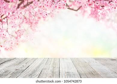 Spring tree blossom garden background