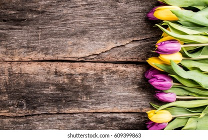 Spring tulips flower on wooden background. Tulip, gardening concept.