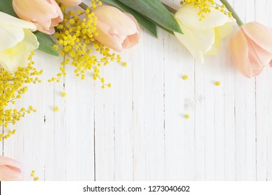 spring tulips and mimosa on white wooden background
